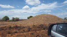 Ameisenhügel --> Erde wird für Ziegelstein-Herstellung verwendet